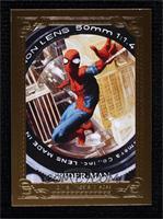 Canvas Gallery - Spider-Man #76/99