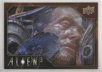 Tier 1 - Bishop's Remains