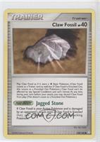 Claw Fossil