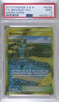 Brooklet Hill [PSA 9 MINT]