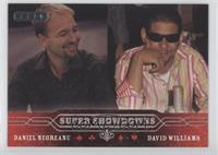 Daniel Negreanu, David Williams