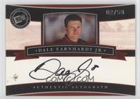 Dale Earnhardt Jr. #/50