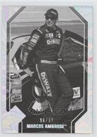 Marcos Ambrose #/99