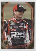 Jeff Gordon /275