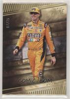 Driver - Kyle Busch #/25