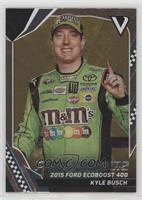 Past Winners - Kyle Busch