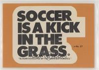 Soccer is a Kick in the Grass