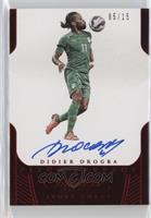 Didier Drogba /15