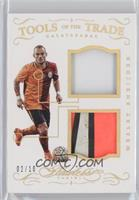 Wesley Sneijder /10