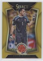 David Ospina (Ball Back Photo Variation) /10