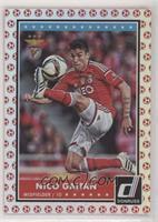 Nico Gaitan #/49