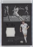 Steven Gerrard /75