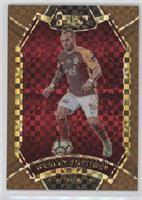 Field Level - Wesley Sneijder /49