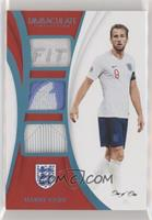 Harry Kane [EX to NM] #/1