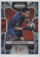 Pedro Gallese /20