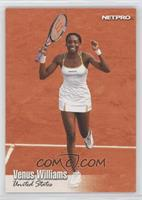 Venus Williams [EX to NM]