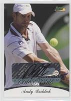 Andy Roddick /85