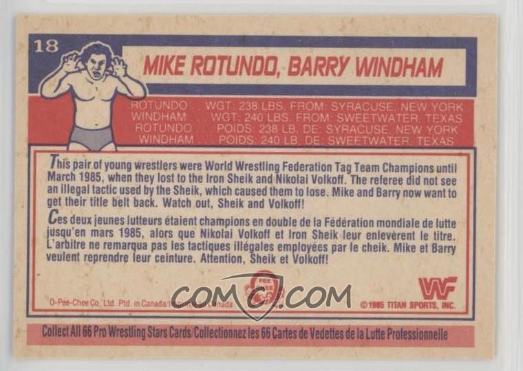 1985 O-Pee-Chee WWF - [Base] #18 - Mike Rotundo, Barry Windham
