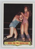The Fabulous Moolah, Wendi Richter