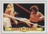 Andre the Giant, Big John Studd