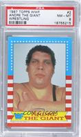 Andre the Giant [PSA 8 NM‑MT]