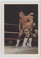 Stan Lane vs. Sean Royal