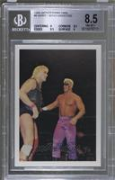 Barry Windham & Sting [BGS 8.5]