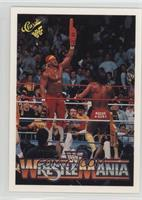 Wrestlemania IV (Randy Savage, Hulk Hogan)