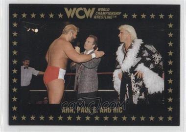 1991 Championship Marketing WCW - [Base] #48 - Ric Flair