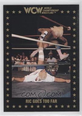 1991 Championship Marketing WCW - [Base] #95 - Ric Flair
