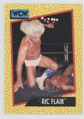 1991 Impel WCW - [Base] #41 - Ric Flair