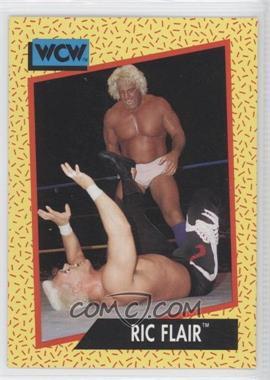1991 Impel WCW - [Base] #43 - Ric Flair