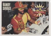 Randy Savage [EX to NM]
