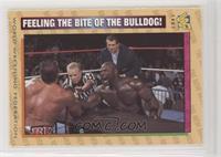Feeling the Bite of the Bulldog!