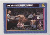 The Bulldog Bites Diesel!