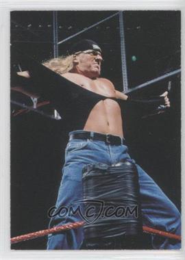 1998 Comic Images WWF Superstarz - [Base] #16 - Triple H