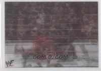 Undertaker, Kane