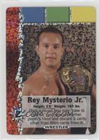 Wrestler - Rey Mysterio Jr.