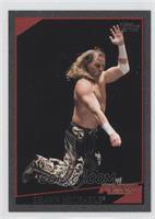 Shawn Michaels /40