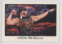 Hulk Hogan /310