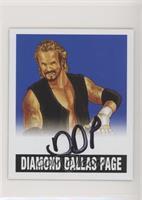Diamond Dallas Page #/25