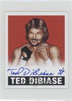 Ted DiBiase /10