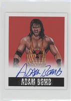 Adam Bomb #/10