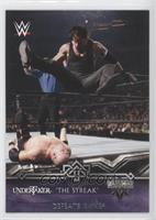 Undertaker Defeats Kane (Undertaker)