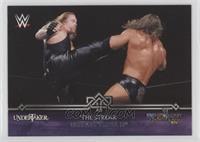 Defeats Triple H (Undertaker)