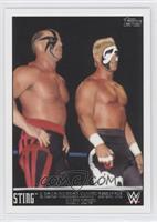Sting & Road Warrior Hawk Defeat the Nasty Boys