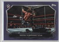Undertaker, Shawn Michaels #/50