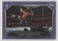 Undertaker, Shawn Michaels /50