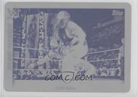Bray Wyatt /1