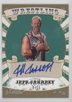 Jeff Jarrett /15